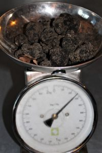 truffes-noires-domaine-saint-alban