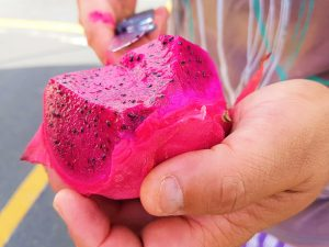hawaii-honolulu-oahu-voyage-dragon-fruit-farmers-kakaako-market